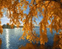 """Картина по номерам """"Осень на пруду"""""""