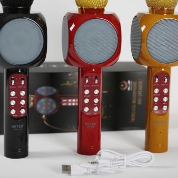 Светящийся караоке-микрофон WSTER WS